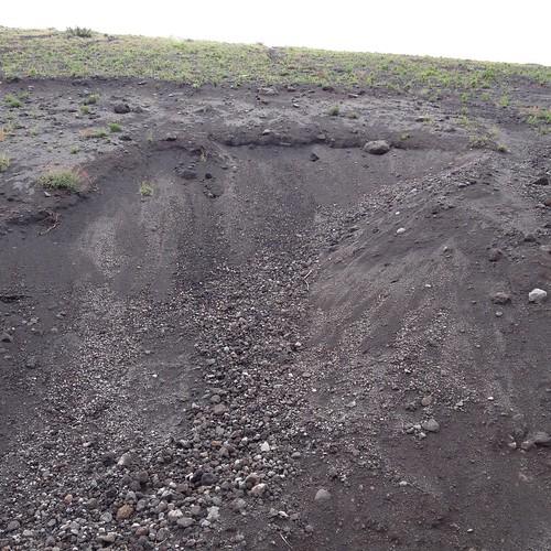 Vesuvio, maggio 2015 (11)