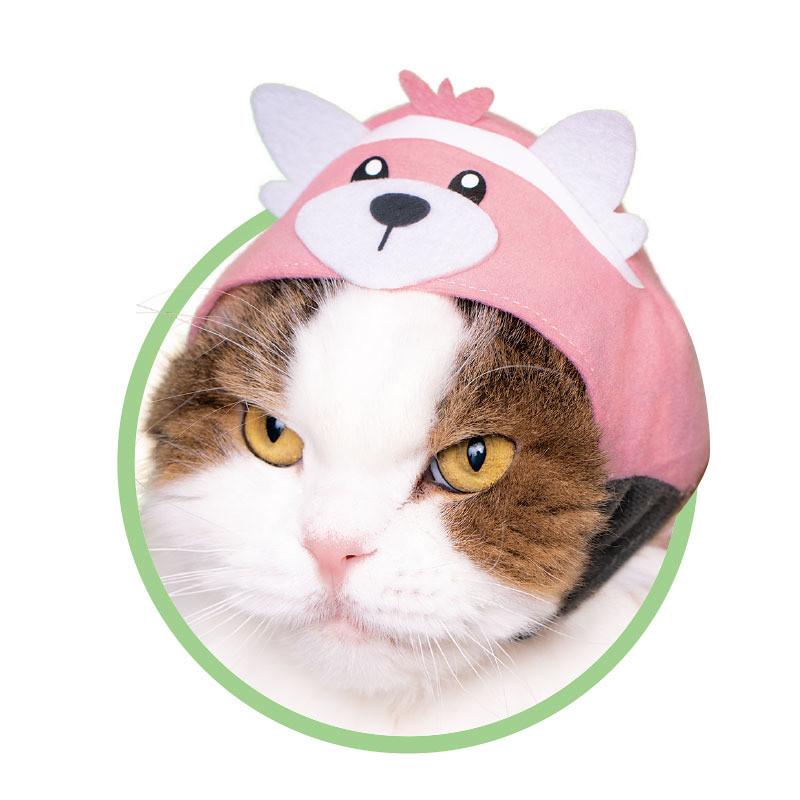 這根本是在逼人多養貓吧XD~ 奇譚俱樂部【可愛貓咪頭套 精靈寶可夢2】專屬貓星人的轉蛋作第30 彈!かわいい かわいい ねこのかぶりもの ポケットモンスター2
