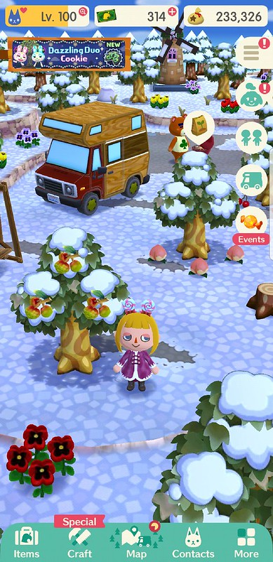 Screenshot_20190131-084110_Pocket Camp