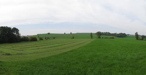20170927 10 375 ostbay Hügel Feld Wald Wiese Bäume_P01