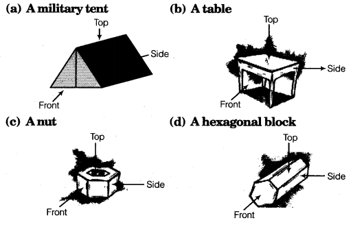 NCERT Solutions for Class 8 Maths Chapter 10 Visualising Solid Shapes 12