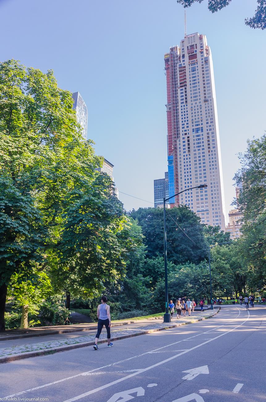 Нью-Йорк_Central Park_Times Square-23