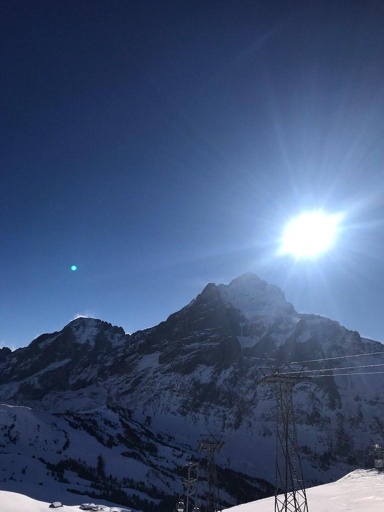 8bc Grindelwald