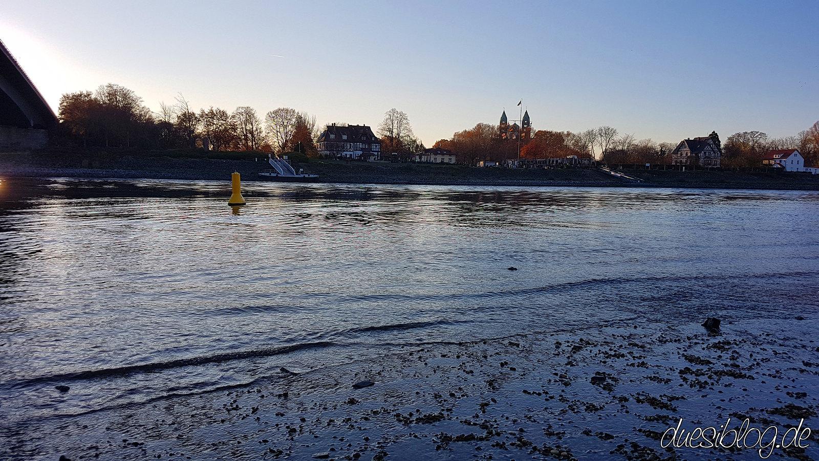 Speyer Rhein Niedrigwasser duesiblog14