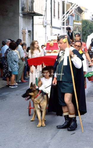 Cepagatti (PE), 1978, Festa di San Rocco e sfilata dei carri con i taralli di San Rocco.