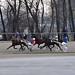 01. 12. 2018 - Miklavževe kasaške dirke v Komendi - Tretja dirka