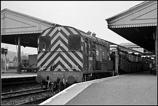 08953, Exeter St.Davids.
