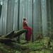 In Silence She Waits by Elizabeth Gadd