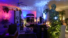 Oasis LED Projection Ambiance