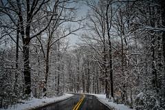 First Snow Fall in 2019 - Walney Park Centreville VA