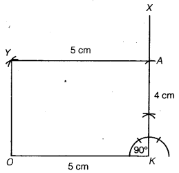 NCERT Solutions for Class 8 Maths Chapter 4 Practical Geometry 29