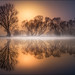 Goldener Morgen by Friedrich Beren