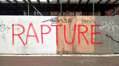 trying to capture the rapture