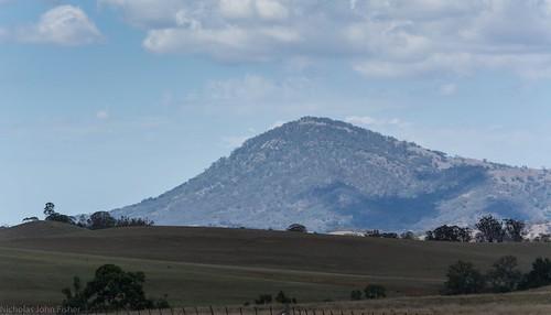Waverley Pinnacle