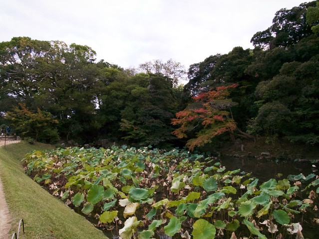 146-Japan-Okayama