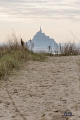 le Mont st Michel vu depuis la plage du bec d'andaine_2 - Photo of Champeaux