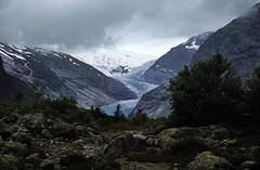 Norwegen 1998 (209) Jostedalsbreen
