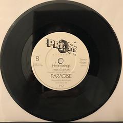 PARADISE:HEARTSTRINGS(RECORD SIDE-B)