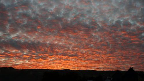 Roxburgh Sunrise.