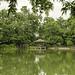 Eco Lake at Singapore Botanical Gardens