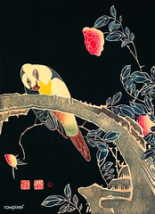 Parrot on the Branch of a Flowering Rose Bush (ca. 1900) illustration by Ito Jakuchu. Original from The MET Museum. Digitally enhanced by rawpixel.