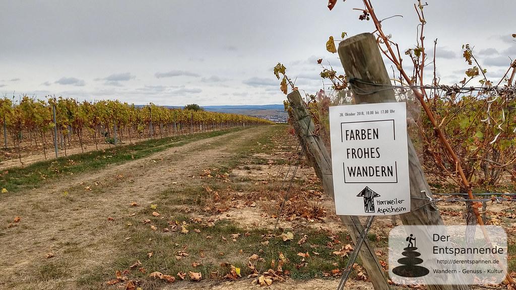 Farbenfrohes Wandern, VG Sprendlingen-Gensingen