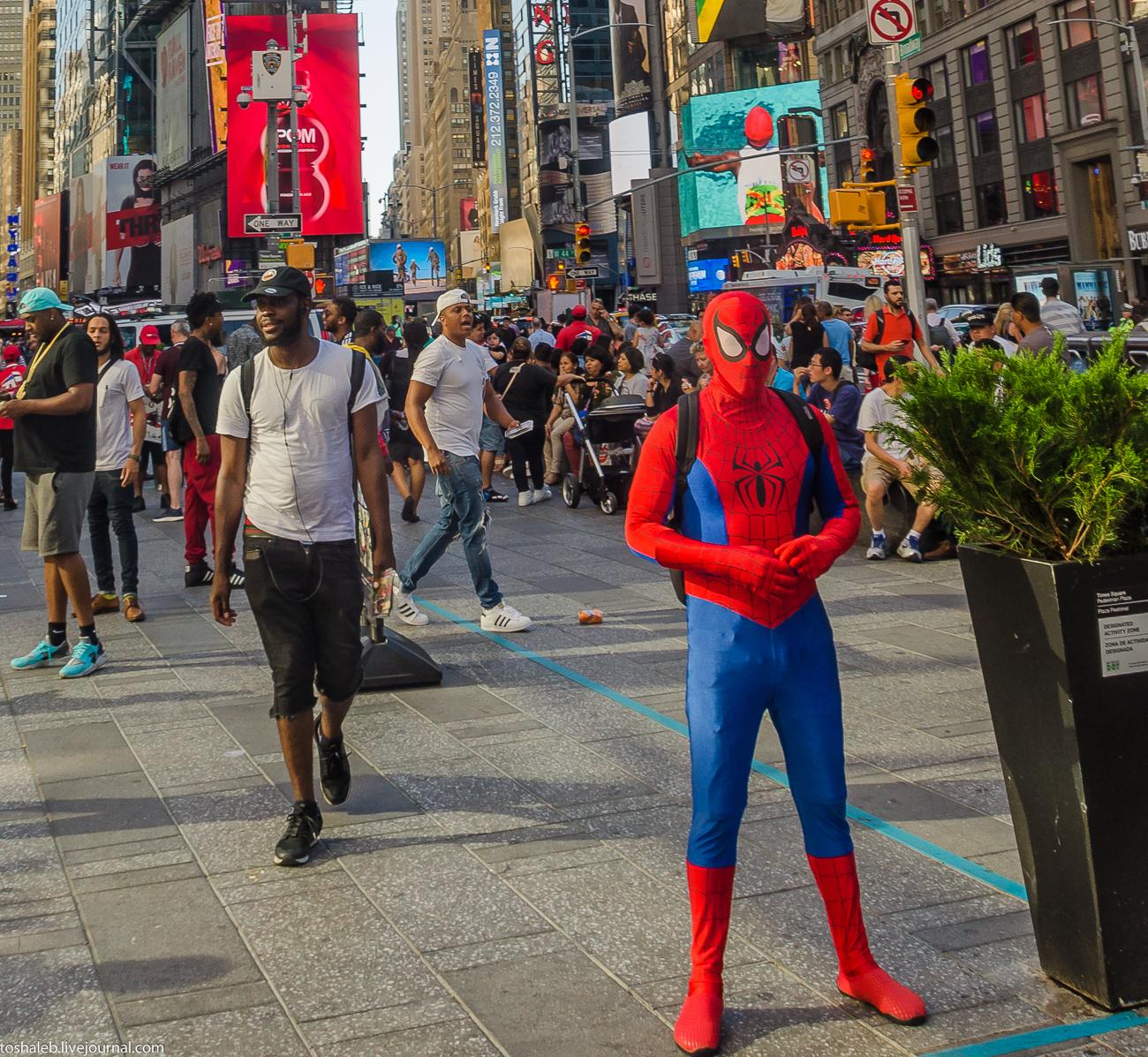 Нью-Йорк_Central Park_Times Square-63