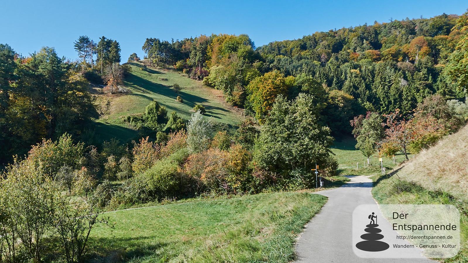Wandern von Ludwigshafen zum Haldenhof am Bodensee
