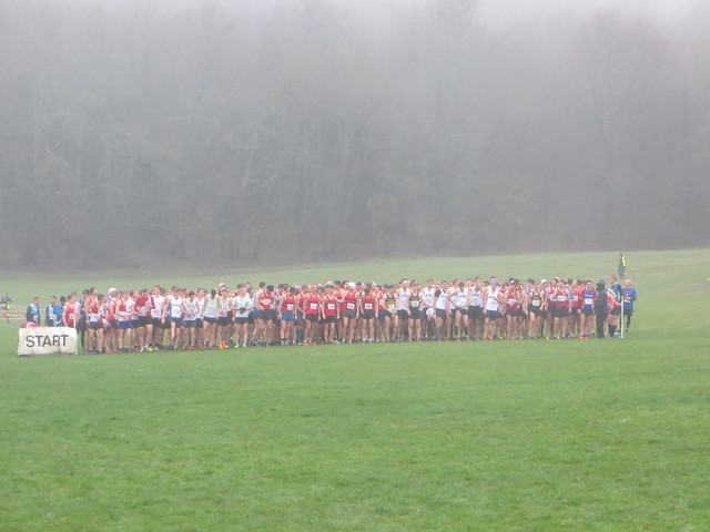 XC League Dec 18