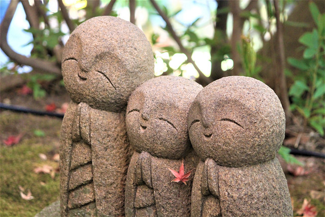 hasederakamakura014