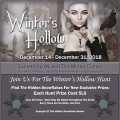 Winter's Hollow - 5L$ Hunt Info - 2018