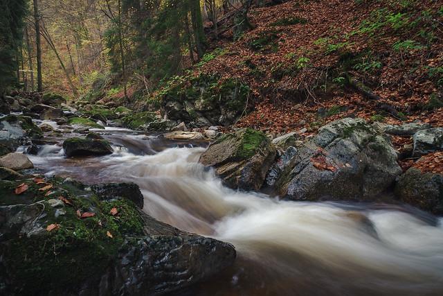 Ilsetal | Nationalpark Harz, Germany
