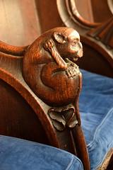 return stalls: beaver biting its genitals (15th Century)