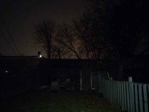 Backyard, past 9 pm #toronto #dovercourtvillage #backyard #night #winter