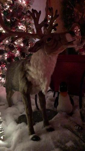 v2018 Dec 2, Santa Land Video (1)