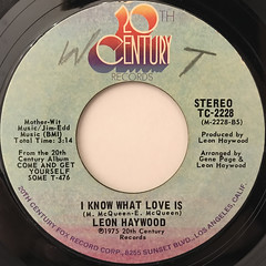 LEON HAYWOOD:I WANT'A DO SOMETHING FREAKY TO YOU(LABEL SIDE-B)