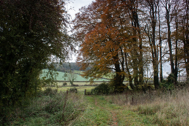 Path to Weatherby Castle