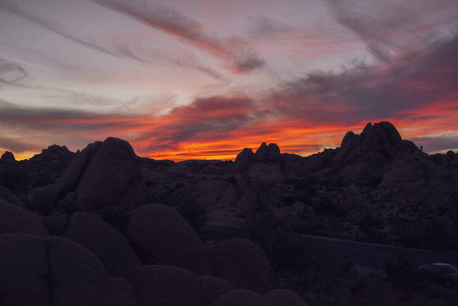 12joshuatree-travel-nationalpark-sunset