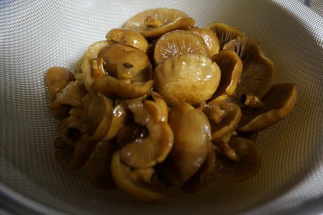 Return the dried mushroom