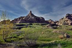 Badlands Rising Tall Amongst the Prairie Grasses (Badlands National Park)