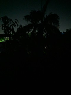 Night Sight on the Xiaomi POCO F1 (Modded Google Camera)
