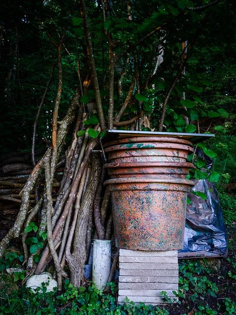 Gartenkunst, Nikon D7100, Sigma 18-35mm F1.8 DC HSM