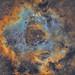 NGC 2244 Rosette Nebula 9th.Jan.2019.