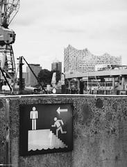 Alternativer Blick auf die Elbphilharmonie 02