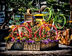 Cycling Image (4)