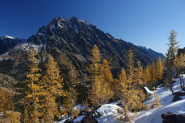 Mount Stuart and Larch, Sony DSC-RX100M3, Sony 24-70mm F1.8-2.8