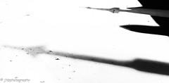 Cradle of Aviation Museum - Winter 2018-19-23.jpg