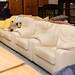 3+1+1 cream leather sofa E350 the set E1260