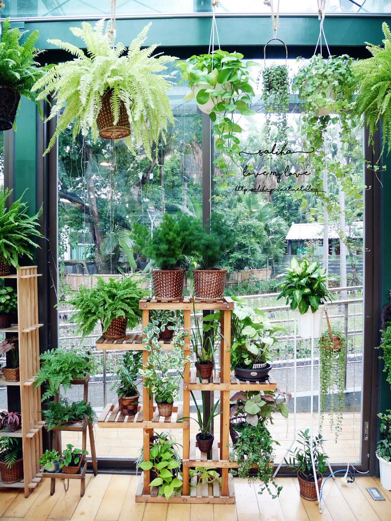 台北古亭站附近絕美玻璃屋植物系浪漫約會餐廳推薦陸聯廳 (9)