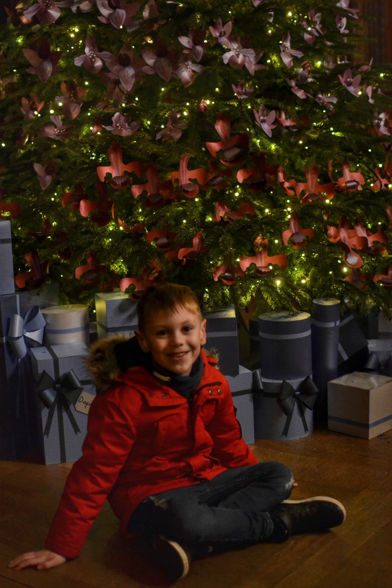 Christmas tree and M Kingston Lacy